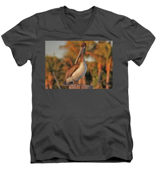 Men's V-Neck T-Shirt featuring the photograph 9- Brown Pelican by Joseph Keane