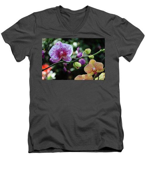 Butterfly Orchid Flowers Men's V-Neck T-Shirt