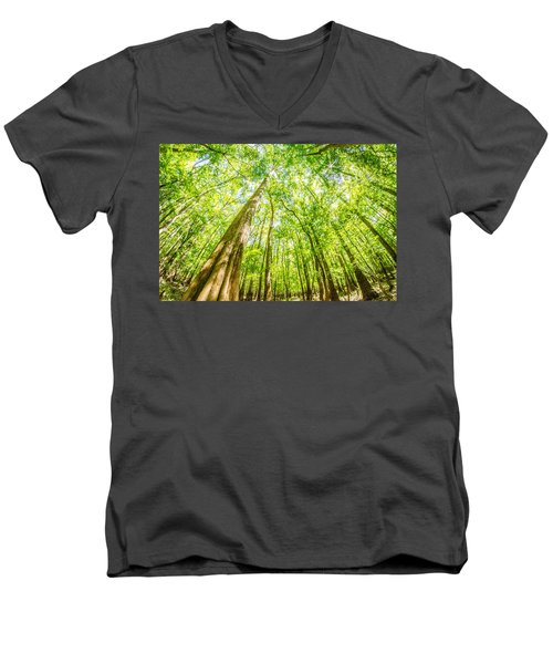 cypress forest and swamp of Congaree National Park in South Caro Men's V-Neck T-Shirt