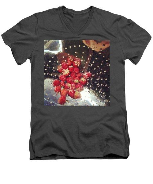 Wild Strawberries Men's V-Neck T-Shirt by Salamander Woods Studio-Homestead