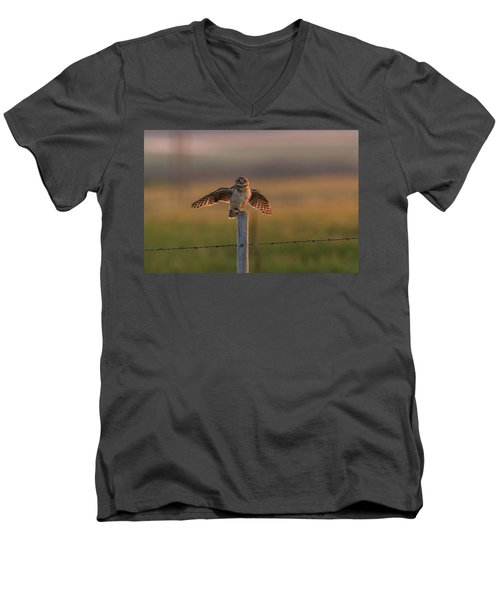 A Balancing Act Men's V-Neck T-Shirt