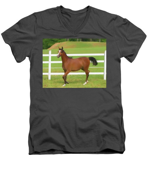A Beautiful Arabian Filly In The Pasture. Men's V-Neck T-Shirt