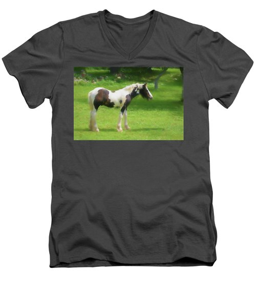 A Beautiful Young Gypsy Vanner Standing In The Pasture Men's V-Neck T-Shirt
