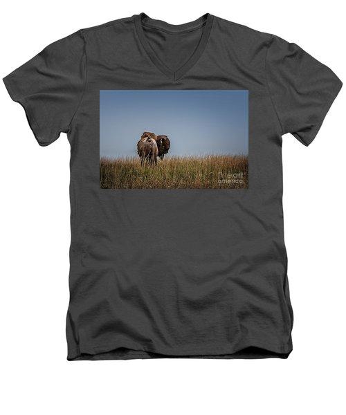 A Bison Interrupted Men's V-Neck T-Shirt