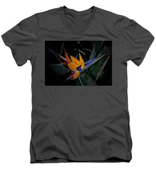 A Bright Blooming Bird Men's V-Neck T-Shirt by Tim Good