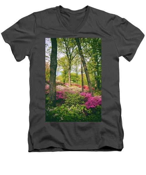 A Colorful Hillside Men's V-Neck T-Shirt
