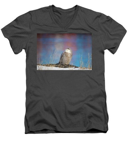 A Colorful Snowy Owl Men's V-Neck T-Shirt