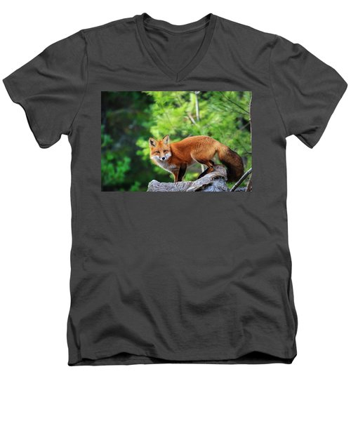 A Cunning Hunter Men's V-Neck T-Shirt