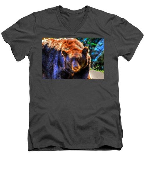 A Curious Black Bear Men's V-Neck T-Shirt