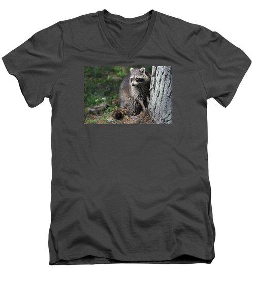 A Curious Raccoon Men's V-Neck T-Shirt by Lisa DiFruscio