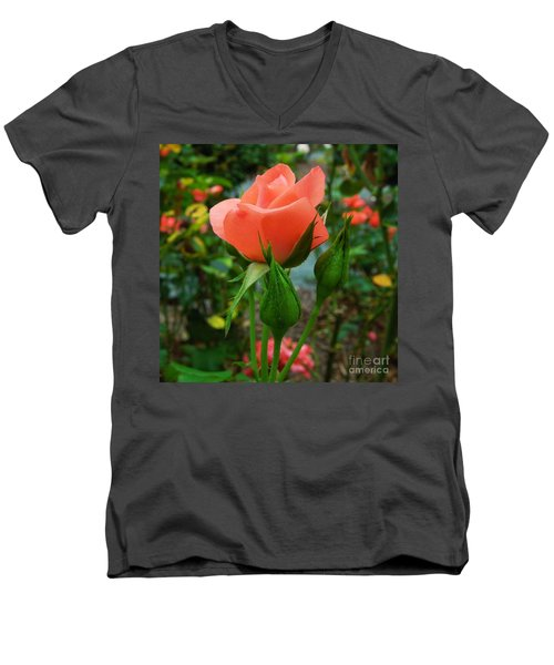 A Delicate Pink Rose Men's V-Neck T-Shirt by Chad and Stacey Hall