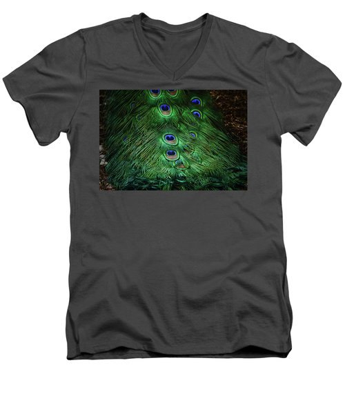 A Different Point Of View Men's V-Neck T-Shirt by Elaine Malott