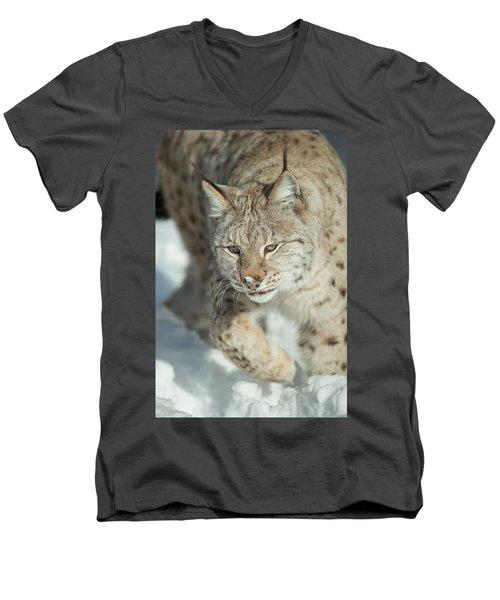 A Eurasian Lynx In Snow Men's V-Neck T-Shirt