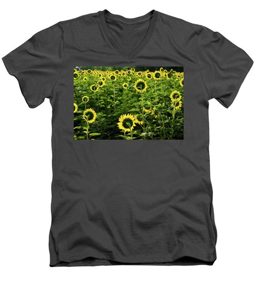 A Flock Of Blooming Sunflowers Men's V-Neck T-Shirt