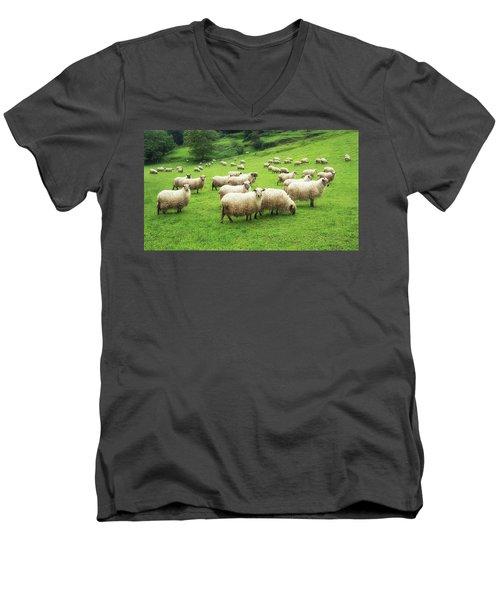 A Flock Of Sheep Men's V-Neck T-Shirt