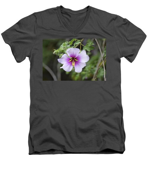 Men's V-Neck T-Shirt featuring the photograph A Flower by Alex King