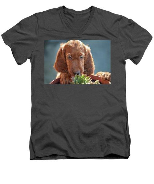 A Gardener Men's V-Neck T-Shirt