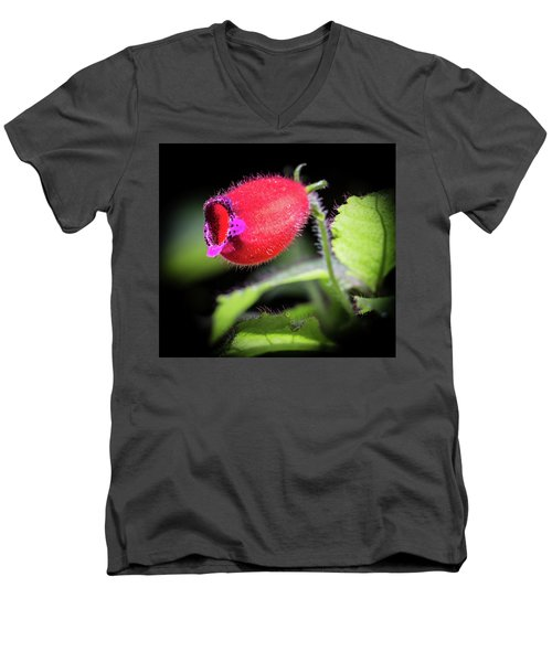 A Gesneriad Men's V-Neck T-Shirt