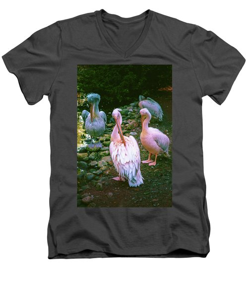 a group of swans near the pond on a Sunny summer day Men's V-Neck T-Shirt
