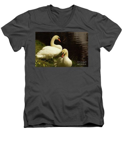 A Handsome Pair Men's V-Neck T-Shirt