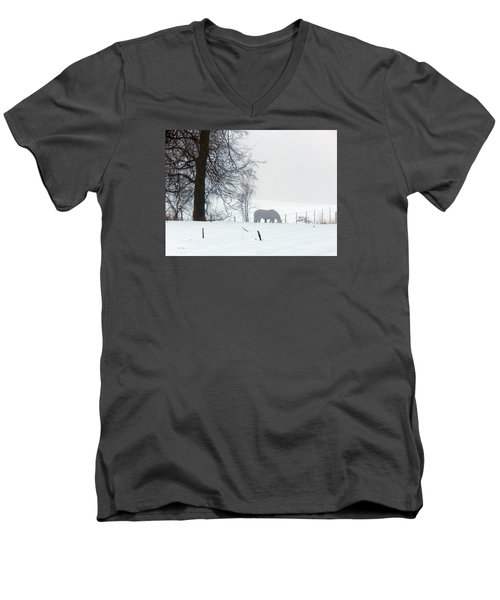 A Horse Of A Different Color Men's V-Neck T-Shirt