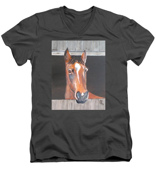 A Horse With No Name Men's V-Neck T-Shirt by Carole Robins