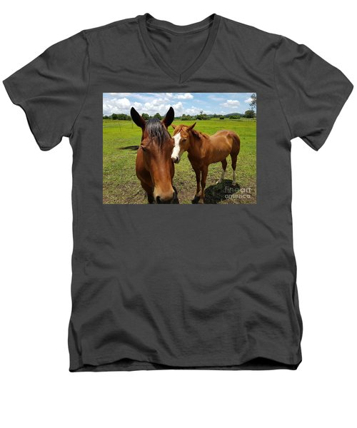 A Horse's Touch Men's V-Neck T-Shirt