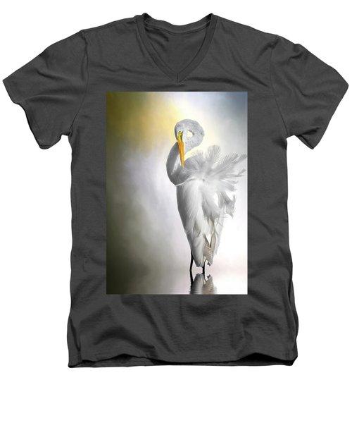 A Lady Needs Her Privacy Men's V-Neck T-Shirt