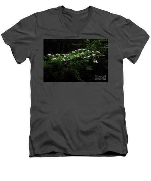 Men's V-Neck T-Shirt featuring the photograph A Light In The Darkness by Skip Willits