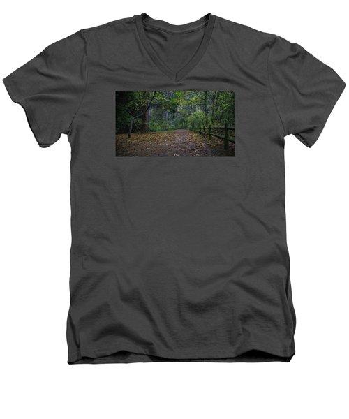 A Lincoln Park Autumn Men's V-Neck T-Shirt