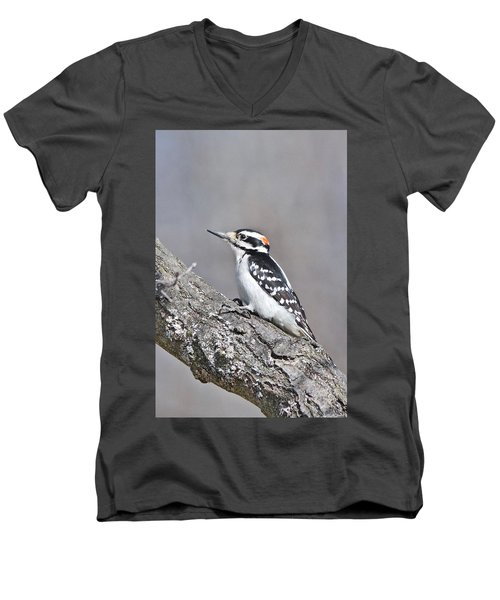Men's V-Neck T-Shirt featuring the photograph A Male Downey Woodpecker 1120 by Michael Peychich