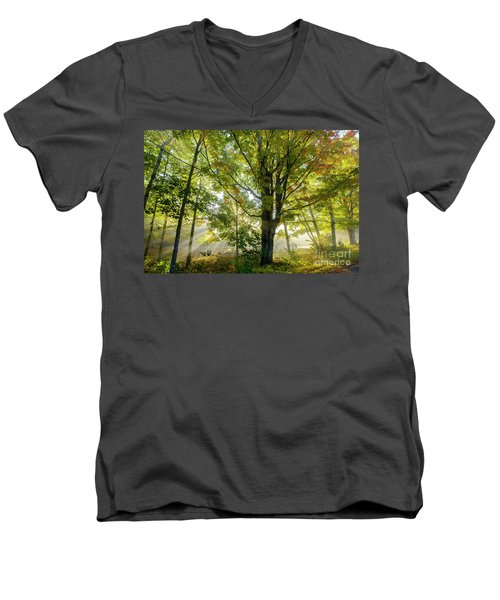 A Misty Fall Morning Men's V-Neck T-Shirt