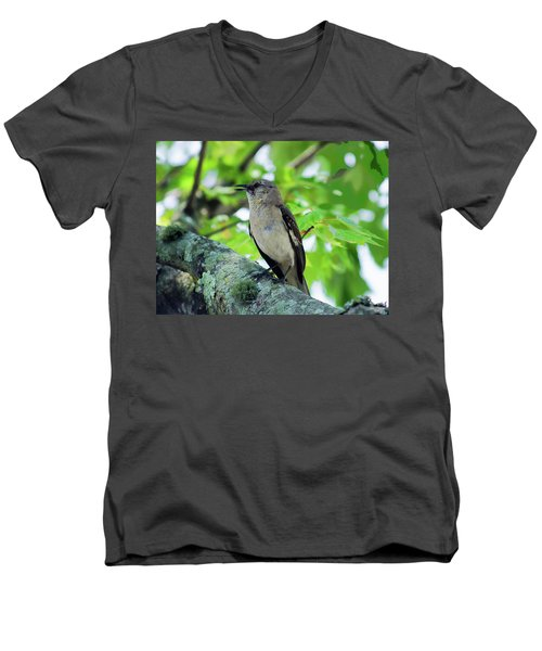 A Mockingbird Song Men's V-Neck T-Shirt