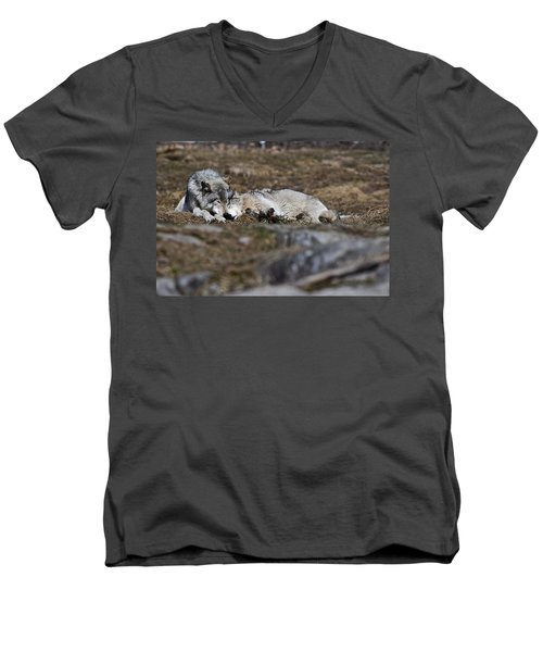 Men's V-Neck T-Shirt featuring the photograph A Much Needed Rest by Michael Cummings