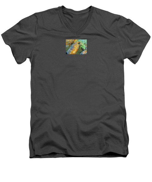 A Myriad Of Lichens Men's V-Neck T-Shirt by Michele Penner