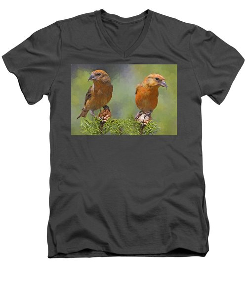 A Pair Of Male Red Crossbills - Painted Men's V-Neck T-Shirt