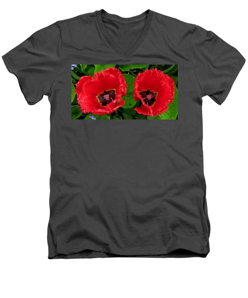 A Pair Of Poppies Men's V-Neck T-Shirt