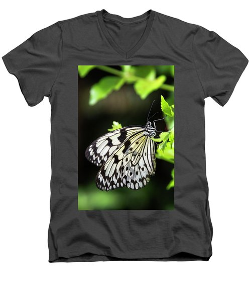 Men's V-Neck T-Shirt featuring the photograph A Paper Kite Butterfly On A Leaf  by Saija Lehtonen