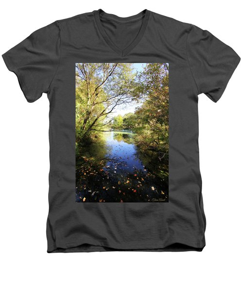 A Peaceful Afternoon Men's V-Neck T-Shirt