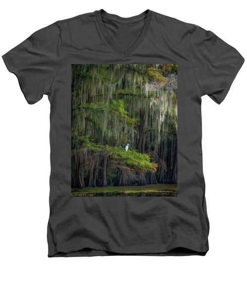 A Perch With A View Men's V-Neck T-Shirt