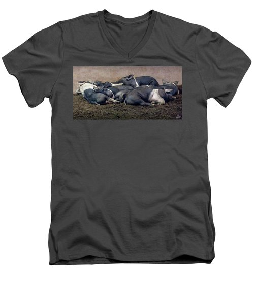A Pile Of Pampered Piglets Men's V-Neck T-Shirt