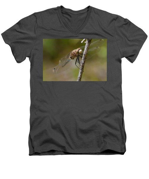 A Rest Men's V-Neck T-Shirt by Janet Rockburn