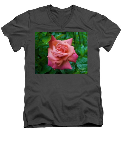 A Rose In Spring Men's V-Neck T-Shirt