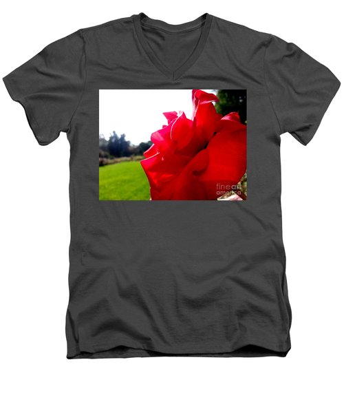 Men's V-Neck T-Shirt featuring the photograph A Rose In The Sun by Robert Knight