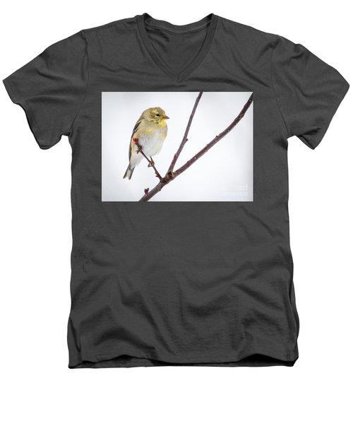 A Sign Of Spring Men's V-Neck T-Shirt by Ricky L Jones