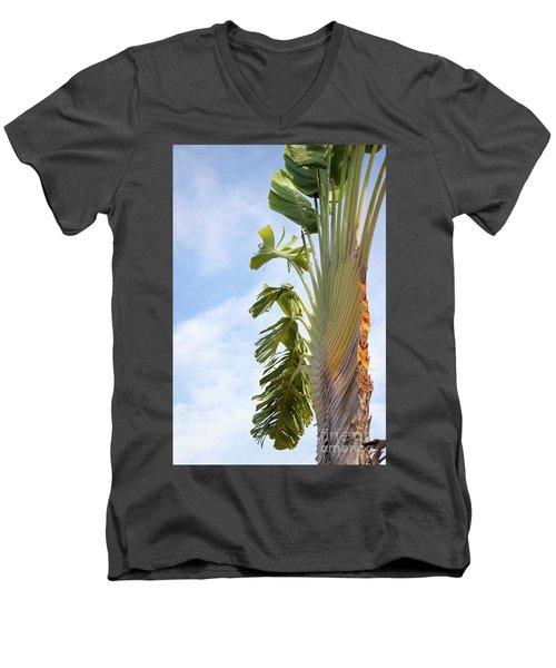A Slice Of Nature Men's V-Neck T-Shirt