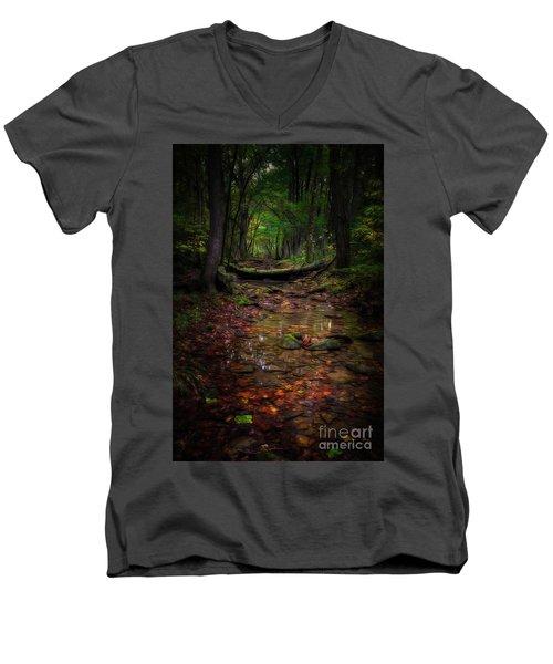 A Spot Of Sunshine Men's V-Neck T-Shirt