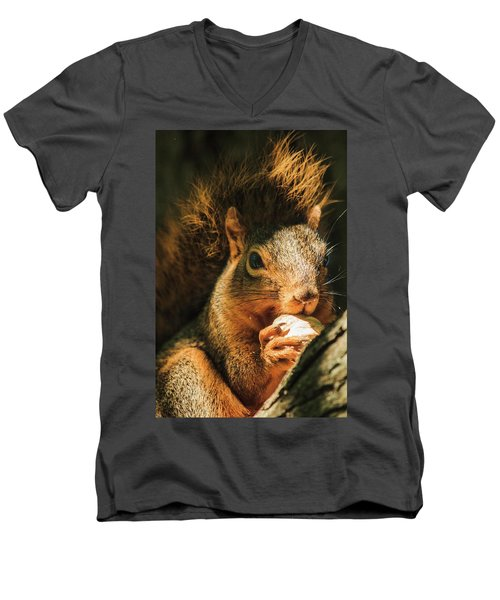 A Squirrel And His Nut Men's V-Neck T-Shirt by Joni Eskridge