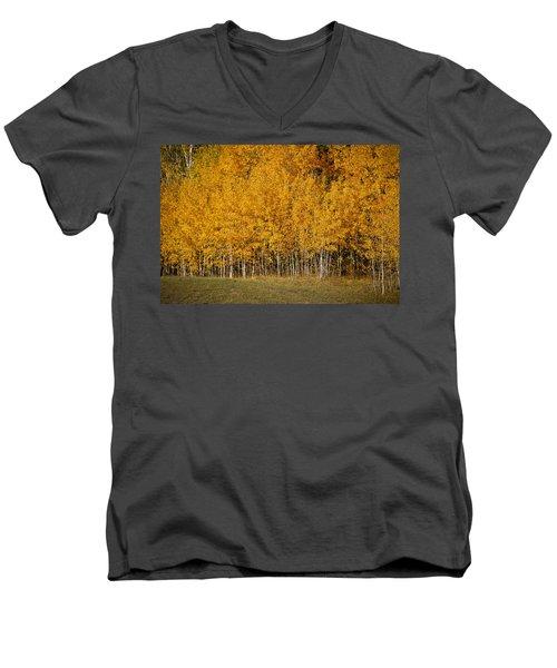 A Stand Of Aspen Men's V-Neck T-Shirt