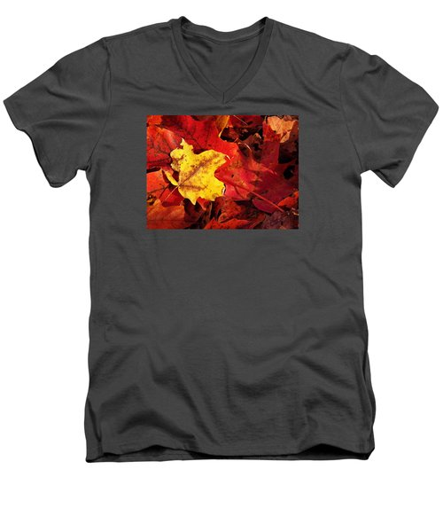 A Standout Men's V-Neck T-Shirt